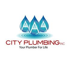 customer at us and repair plumbing was in plumbers work drain testimonials aaa timely save our fashion kitchen from price a cleaning fair were the courteous to roanoke completed they flood helped prompt