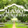 Porch Pro Headshot Alamo Lawn and Tree Service