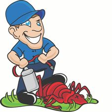 All Star Pest Control Pest Control Company Indian Trail Nc