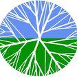 Porch Pro Headshot Carolina Lawn Care