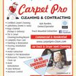 Porch Pro Headshot Carpet Pro Cleaning & Contracting