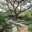 Porch Pro Headshot Erik's Tree & Lawn Care Services