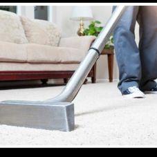 Knott's Carpet Cleaning. Carpet Cleaner