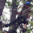 Porch Pro Headshot New Leaf Tree Care