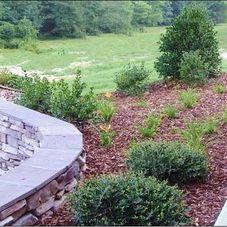 Precision Landscaping Landscaping Company Shallotte Nc