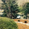 Porch Pro Headshot Scenic Landscaping