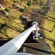 Porch Pro Headshot Scott's Tree Service 763-245-3184