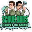 Porch Pro Headshot Scrub Buds Carpet Cleaning