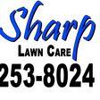Porch Pro Headshot Sharp Lawn Care