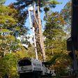 Porch Pro Headshot Strunk C. Tree Service