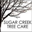 Porch Pro Headshot Sugar Creek Tree Care