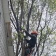 Porch Pro Headshot Tree top techs llc