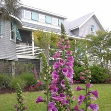 Yardworks Landscape Architect Amp Designer Sullivans