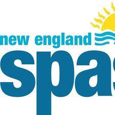 New England Spas Pool Spa Service Natick Ma Projects